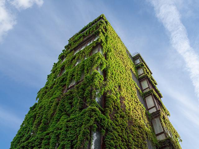 London Berufsschulen - Berufsfeld Naturwissenschaften: Cutting Edge Green Walking Tour
