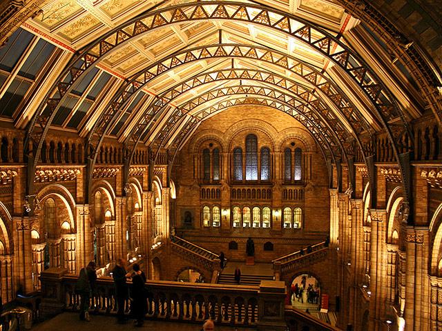 London Berufsschulen - Berufsfeld Naturwissenschaften: Natural History Museum